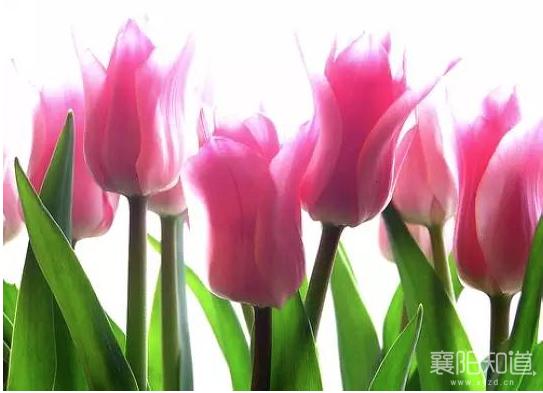 屏幕快照 2017-03-22 14.18.10.png