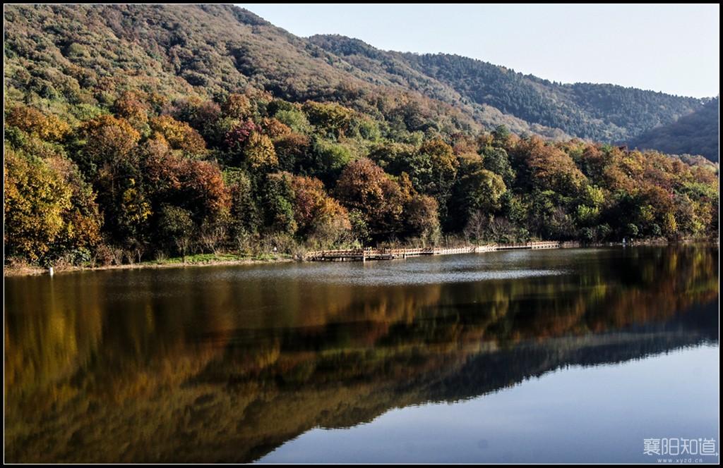 岘山国家森林公园 (4).jpg