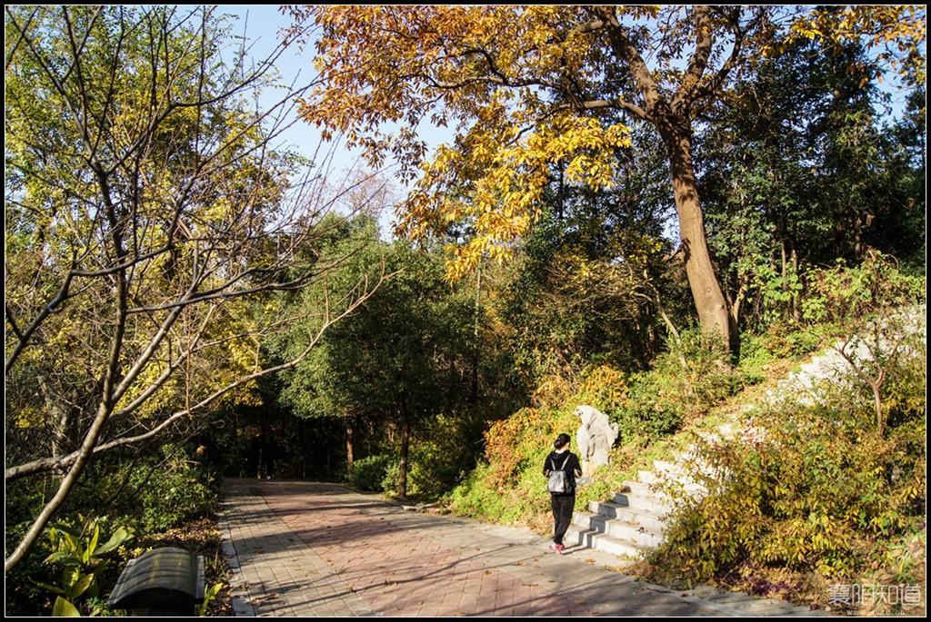岘山国家森林公园 (8).jpg